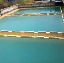 High BOD wastewater treatment